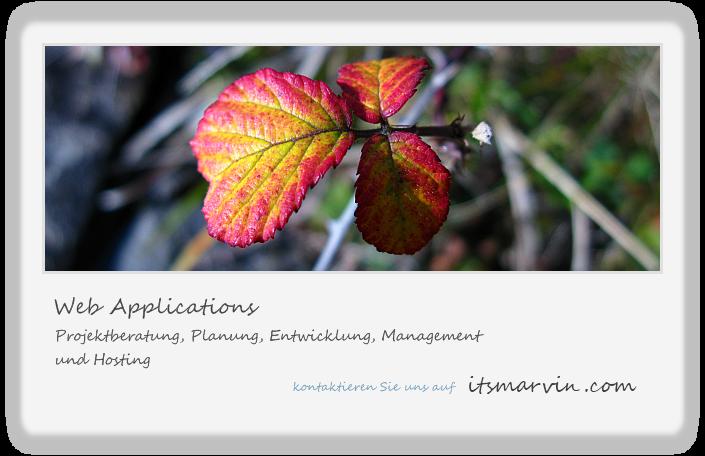 Projektberatung, Planung, Entwicklung, Management und Hosting